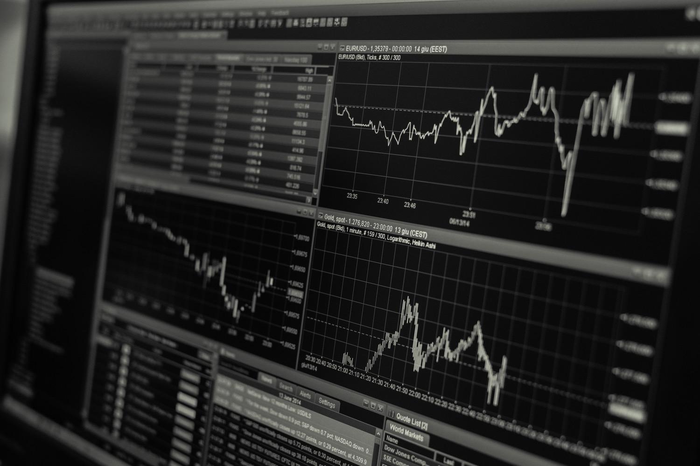 decyzje zakupowe statystyki